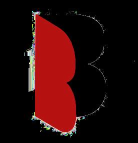 Branex s.r.o. - garážové brány, krídlové a posuvné brány, automatizácia, elektroinštalácie